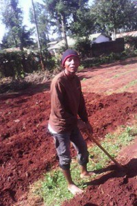 Working in the gardens of Kenya