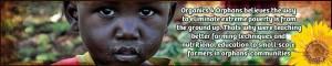 Organics 4 Orphans 80