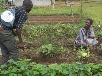 Provision Garden-Ma-Esther's Home (4)