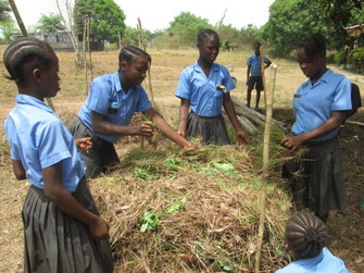 School Girls learning to make compost 2