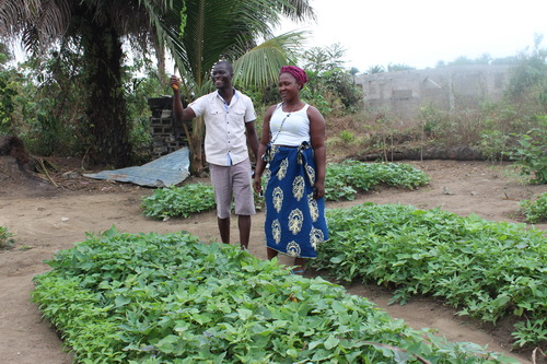 "Eric and Kamah show us a beautiful crop of potato greens and other leafy vegetables. We are always promoting nutrition through our Organic Agriculture. As our trainers say "" Healthy Soil, Healthy Plants, Healthy People"""