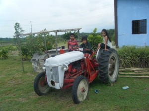 Farm Tractor still going strong