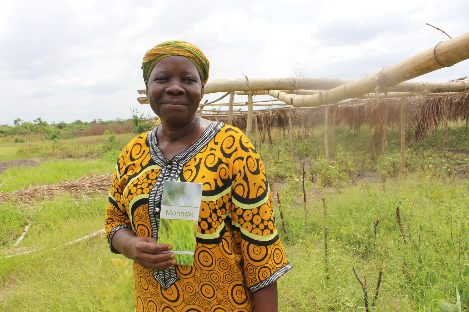 Kakata Farmers learn about the value of moringa and are starting to plant it.
