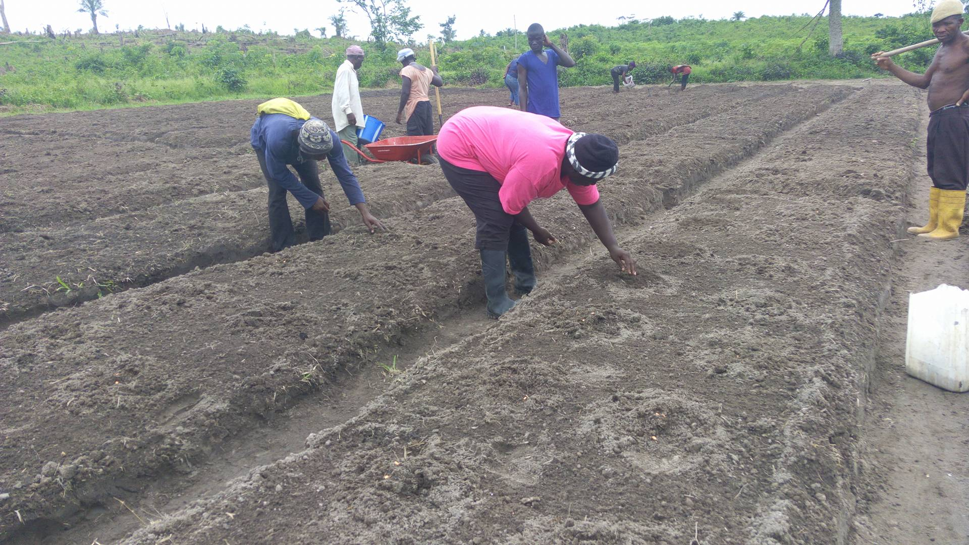 Planting the seeds Provision of Hope provided.