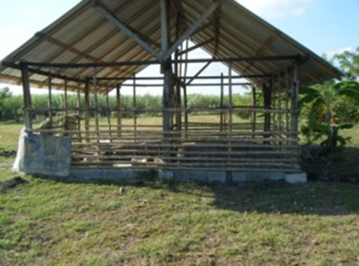 Small barn with pigs, sheep and chickens