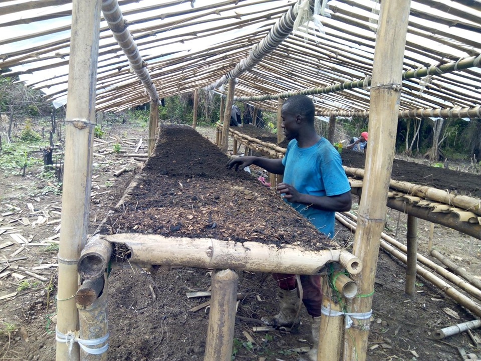Jerry (Edwin Cooper)  Kelvin and Joseph with the help of hired youth in the community, constructed a nursery.  Here is where they will plant more delicate seeds, like peppers, chili, lettuce, Chinese cabbage etc,  Later they transplant the seedlings to the raised beds.